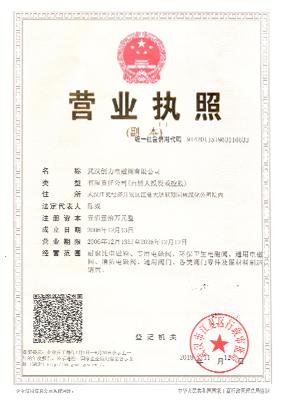 武汉创力营业执照
